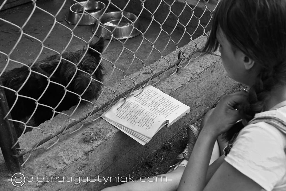 czytanie psom