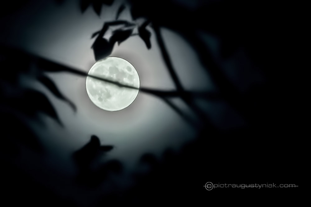 ksiezyc pełnia moon